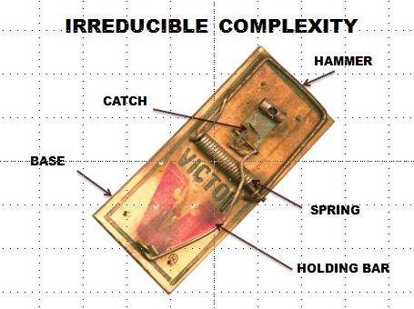 irreducible complexity 2